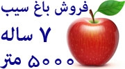 فروش باغ سیب قرمز 7 ساله در ارومیه،5000 متر زمین،املاک ابراهیمی،کد196