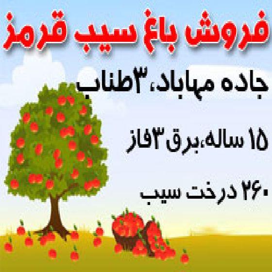 فروش باغچه سیب قرمز در جاده سنتو ارومیه،3 طناب،درختان 15 ساله،کد S32