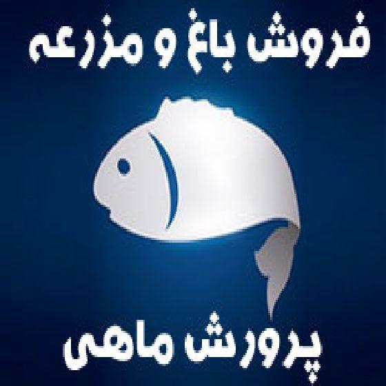 فروش باغ و مزرعه پرورش ماهی در ارومیه،سند 6 دانگ،واحد فعال،دارای رستوران کباب ماهی