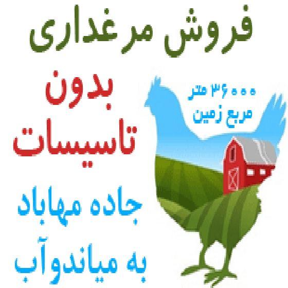 فروش مرغداری بدون تاسیسات در میاندوآب،36000 متر مربع زمین،دارای مجوز مرغداری