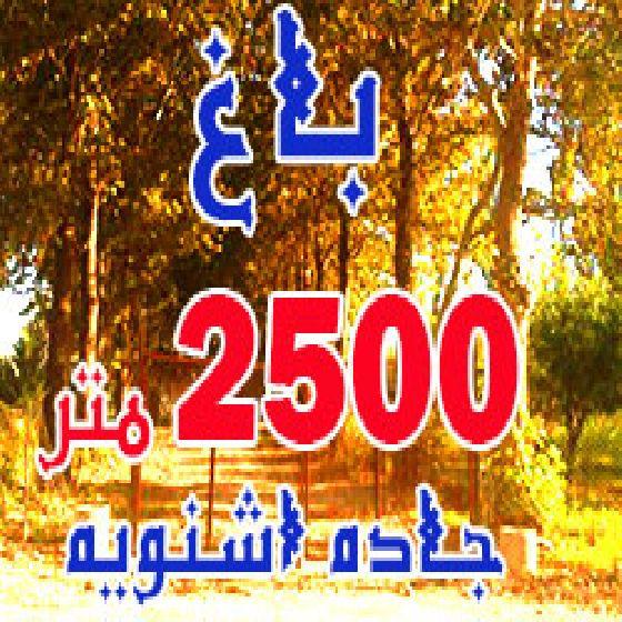 فروش باغ 2500 متری در جاده اشنویه ارومیه