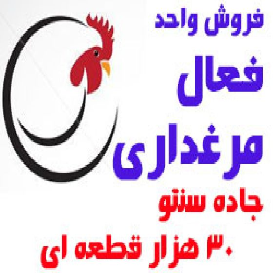 فروش مرغداری فعال 30 هزار قطعه ای در جاده سنتو ارومیه