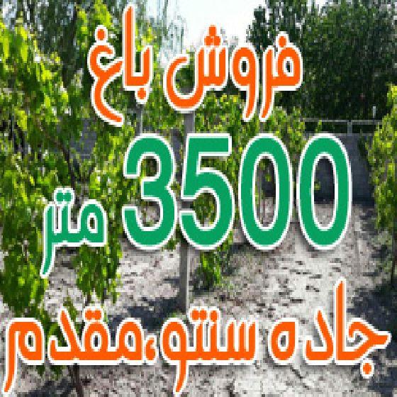 فروش باغ 3500 متر در جاده سنتو ارومیه،روستای مقدم،باغ الوان
