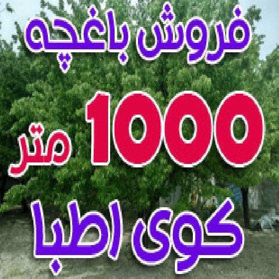 فروش باغچه 1000 متری در صالح آباد کوی اطبا ارومیه، دارای برق ، چاه و سند