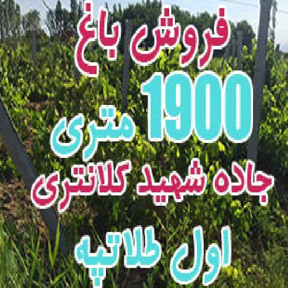 فروش باغ 1900 متری انگور ایستاده در جاده شهید کلانتری اول طلاتپه ارومیه