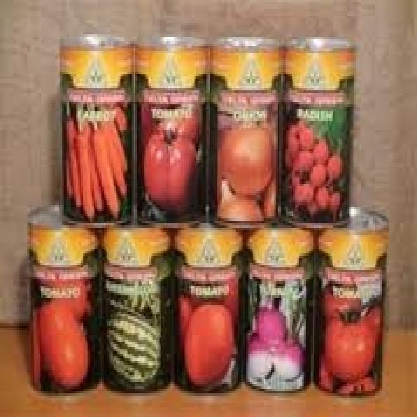 فروش انواع بذر خارجی اصل 09199762163