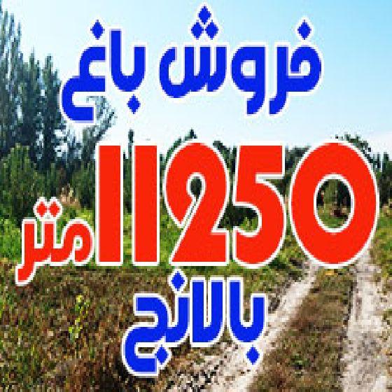 فروش باغ 11250 متر در جاده بالانج ارومیه