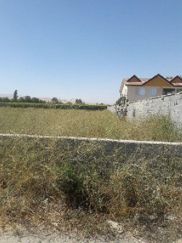 فروش زمین در امامزاده1200 متر ارومیه