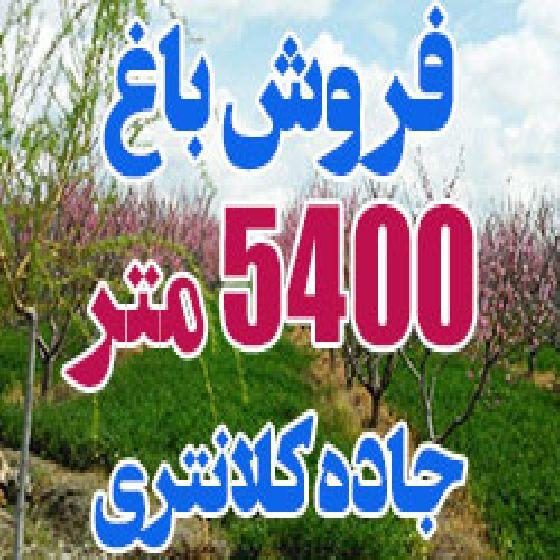 فروش باغ 5400 متر در جاده کلانتری ارومیه