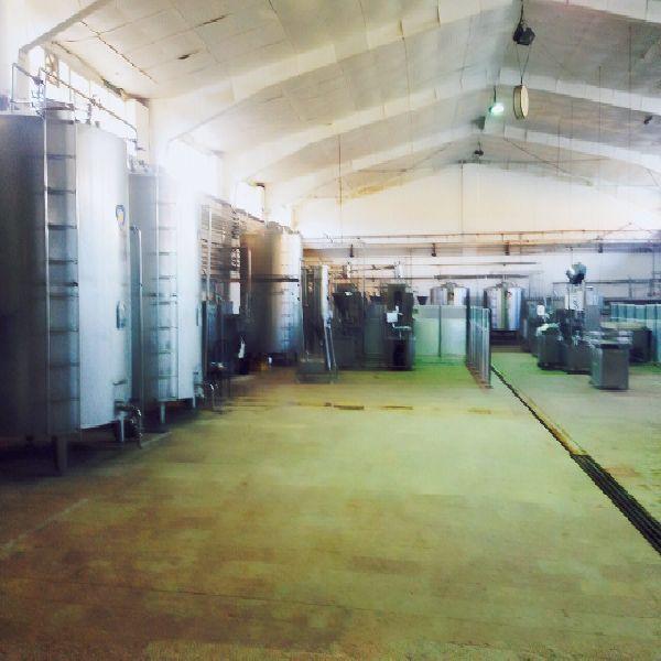 فروش و یا مشارکت در کارخانه لبنیات اماده تولید