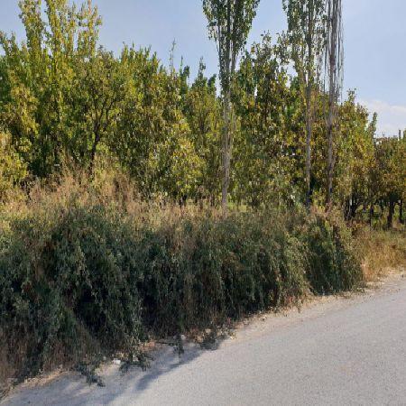 فروش باغ 1100 متر بهترین نقاط جاده سنتو ارومیه