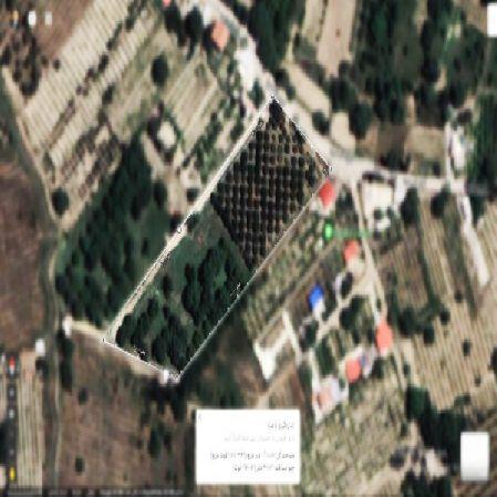 فروش باغ 10000 متر جاده امامزاده ارومیه