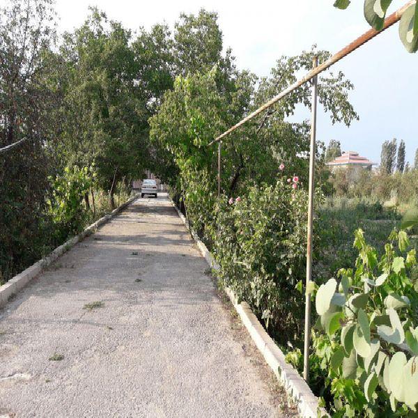 فروش باغ الوان 5900  متر بر جاده دریا ارومیه