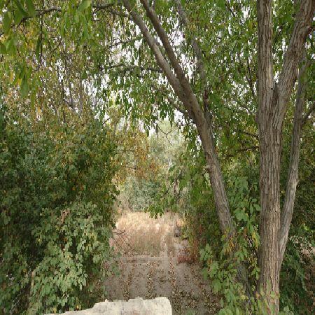 فروش باغ 1750 متر جاده سنتو ارومیه