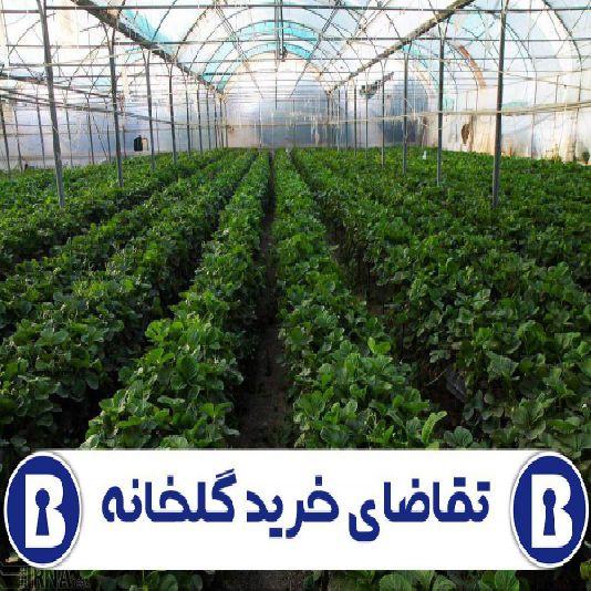 تقاضای خرید گلخانه در ارومیه
