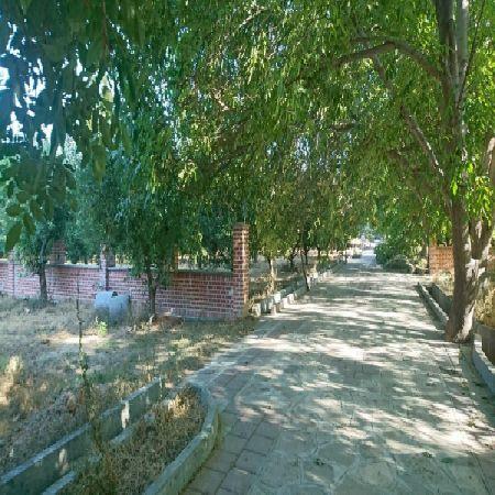 فرصت سرمایه گذاری فروش 10000 متر باغ در داخل شهر ارومیه